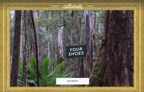 Allbirds: Meet Your Shoes - The FWA