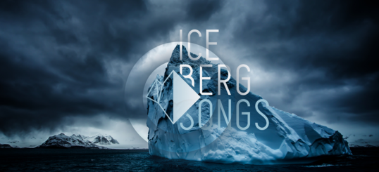 The FWA - Insights    United Nations - Iceberg Songs